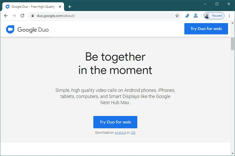 Google Duo for Web App